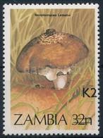 ** 1991 Gomba Felülnyomott Bélyeg Mi 562 - Unclassified
