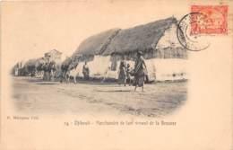 Djibouti / Topo - 71 - Marchand Venant De La Brousse - Belle Oblitération - Djibouti