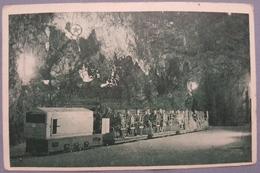 Old Postcard Postojna Adelsberg Postojnska Jama Tram Vlak Cca 1940. Slovenija - Slovénie