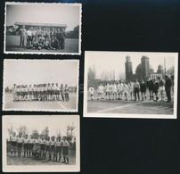 Focicsapatok, 4 Db Fotó, 6×8,5 és 7,5×40,5 Cm - Autres Collections