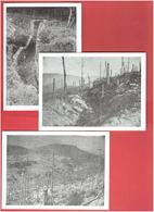 CHAMP DE BATAILLE COLLET DU LINGE ORBEY DANS LE HAUT RHIN JUILLET AOUT SEPTEMBRE 1915 WWI 1914 1918 LOT 5 C.P.M. - Weltkrieg 1914-18