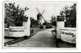 CPA - Cartes Postales-Belgique - Knokke--Le Vieux Moulin -1955-S4067 - Knokke