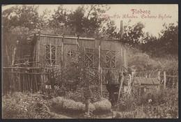 FLOBECQ * VLOESBERG * MONT DE RHODES * CABANE SYLVIE * 1913 - Ath