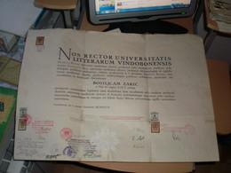 Noc Rector Universitatis Litterarum Vindobonensis Bosiljcam Zaric Nis SHS Vindobonae StampsStempelmarke  Signatures Rekt - Documents Historiques