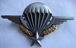 Insigne PARA Brevet Certificat Parachutiste - Marine