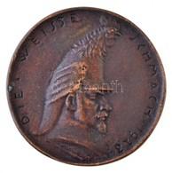 Esseő Erzsébet (1883-1954) 1923. 'Die Weisse Schmach (Fehér Szégyen) 1923' Br Emlékérem (73mm) T:2 1923. 'Die Weisse Sch - Monnaies & Billets