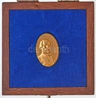 2000- . 'Kossuth-díj' Aranyozott Kitűző, Eredeti Tokban (17x25mm) T:1,1-  MNK.: 729. - Monnaies & Billets