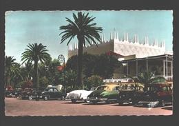 Cannes - Le Palm-Beach (Roger Séassal) - Oldtimer Cars / Voitures - Cannes