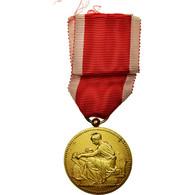 France, Société Industrielle De Rouen, Médaille, Excellent Quality, Chabaud - Militaria