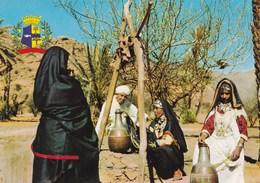 TAFRAOUT SCENE CHAMPETRE (dil408) - Maroc