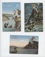 Rhin, Loreley,Lorelei, 3 Cartes, Légende, Harpe,barque, Marinier, Rocher - Loreley