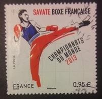 FRANCIA 2013 - 4831 - Francia