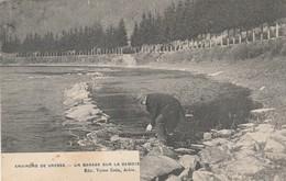 Vresse Sur Semois ,Bohan, Un Garage Sur La Semois  ,( Victor Caën ) - Vresse-sur-Semois