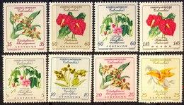 COLUMBIA - FLOWERS - ORCHIDS + VARIANT  - **MNH - 1960 - Orchidées