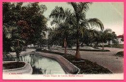 Brésil - Bahia - Parque Duque De Caxias - Parc - Edit. J. MELLO - Colorisée - Salvador De Bahia