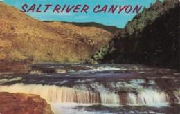 Arizona Salt River Canyon Navajo Falls - United States