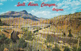Arizona Salt River Canyon Highway Bridge - United States
