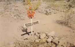 Arizona Tombstone Hanged By Mistake 1953 - United States
