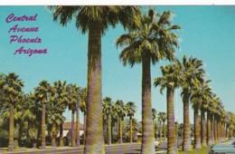 Arizona Phoenix Palm Lined Central Avenue - Phoenix