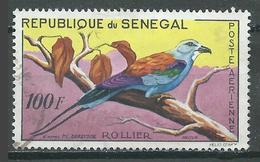 Sénégal Poste Aérienne YT N°32 Oiseau Rollier Oblitéré ° - Senegal (1960-...)