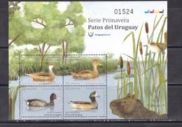 Uruguay 2018 Birds Fauna Duck Sheet Of 4v MNH - Oiseaux