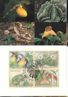 UNO WIEN, 205-208 MC, Maximumkarte 40, Gefährdete Arten 1996 - Maximumkarten