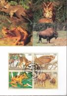 UNO GENF, 263-266 MC, Maximumkarte 30, Gefährdete Arten 1995 - Maximumkarten