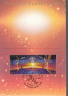 UNO WIEN, 133-134 MC, Maximumkarte 9, Weltraumjahr 1992 - Maximumkarten