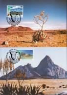 UNO WIEN, 114-115 MC, Private Maximumkarten, Namibia 1991 - Maximumkarten