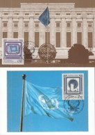 UNO GENF, 206-207 MC, Maximumkarten 5, 50 Jahre UNPA 1991 - Maximumkarten
