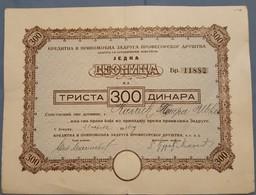 Kreditna I Pripomocna Zadruga Profesorskog Drustva Zemun Srbija Serbia Deonica Share Dionica 1938 - Documents Historiques