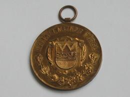 Médaille Marktgemeinde Wörgl - Markt Erhebungsfeier Wörgl 1911   ***** EN ACHAT IMMEDIAT ***** - Firma's