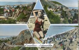 50 - Carolles - Edenville - Multivue - France