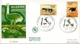 "Algérie,Algéria ; FDC 1967 "" Faune Saharienne  "" - Algeria (1962-...)"