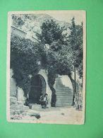 TIFLIS Tbilisi 1930x Grave Of Griboyedov. Russian Postcard - Géorgie