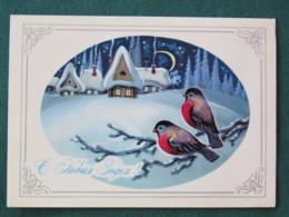 Russia 1979 Postcard Christmas Birds - Russie