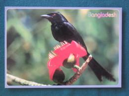"Bangladesh Postcard ""bird"" Unused - Bangladesh"