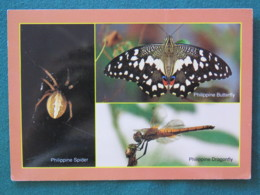 """Philippines 1995 Postcard """"butterfly Spider Dragonfly Insects"""" Unused - Coconut Tree - Philippines"""