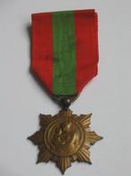 Médaille/Décoration - Famille Francaise   **** EN ACHAT IMMEDIAT **** - France