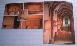 2 CARTOLINE MIRANDOLA CHIESA DI SAN FRANCESCO - Chiese E Cattedrali