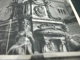 Conchiglia Shell  COQUILLES   CONCHAS  BASE FONTANA DEL NETTUNO BOLOGNA EMILIA ROMAGNA - Monumenti