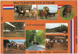 Hoogerheide - Ruitersportcentrum 'Stevenshof', Kooiweg 28  - (Noord-Brabant) - Otros
