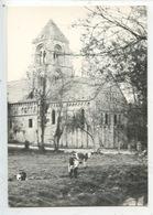 Thaon (calvados) église Romane XIè (pré Vache) - France