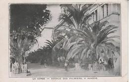 20A - AJACCIO - Avenue Des Palmiers - Ajaccio