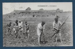 MADAGASCAR - Cultivateurs - Madagascar