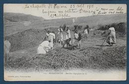 MADAGASCAR - Betsileo Dépiquant Le Riz - Madagascar