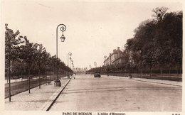 Parc  De  Sceaux -   L' Allée  D' Honneur. - Sceaux