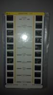 Stéreocarte - N° 74703 A - ARGENTIERE ETE - Visionneuses Stéréoscopiques