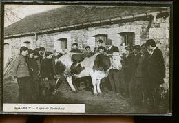MALROY LECON DE ZOOTECHNIE          JLM - Autres Communes