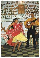 DANZAS Y BAILES REGIONALES DE ESPANA - Bailaores Del Sacromonte - Danseurs Flamenco - Granada